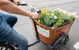 Lastenfahrrad mit Blumen an Board